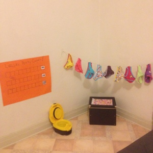 A Pinterest Perfect Potty Party! What could go wrong?